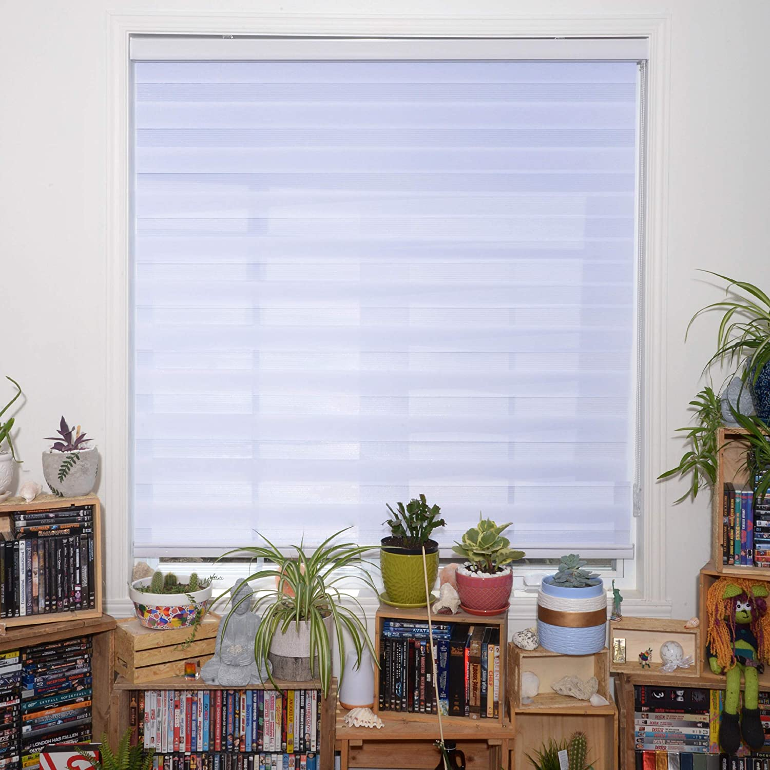 Sheer Horizontal Window Blinds and Shades for Daytime and Nighttime WYMO Zebra Blinds for Windows 38 x 64 inch 20 to 72 inch Wide Light Filtering Roller Shades for Windows with White Valence