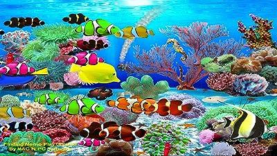 Finding Nemo Aquarium [Download]