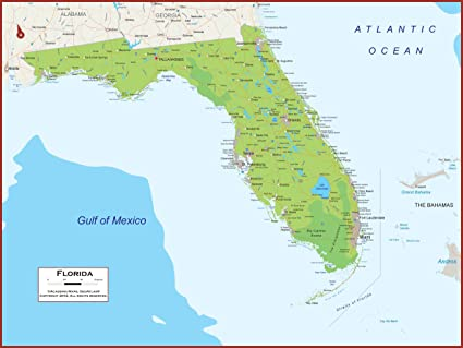 Amazon Com 36 X 27 Florida State Wall Map Poster With Topography