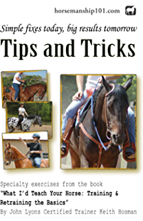 Tips and Tricks (What Id Teach Your Horse Book 2)