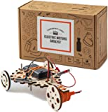 Tinkering Labs Electric Motors...