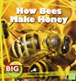 How Bees Make Honey (Big Picture: Food)