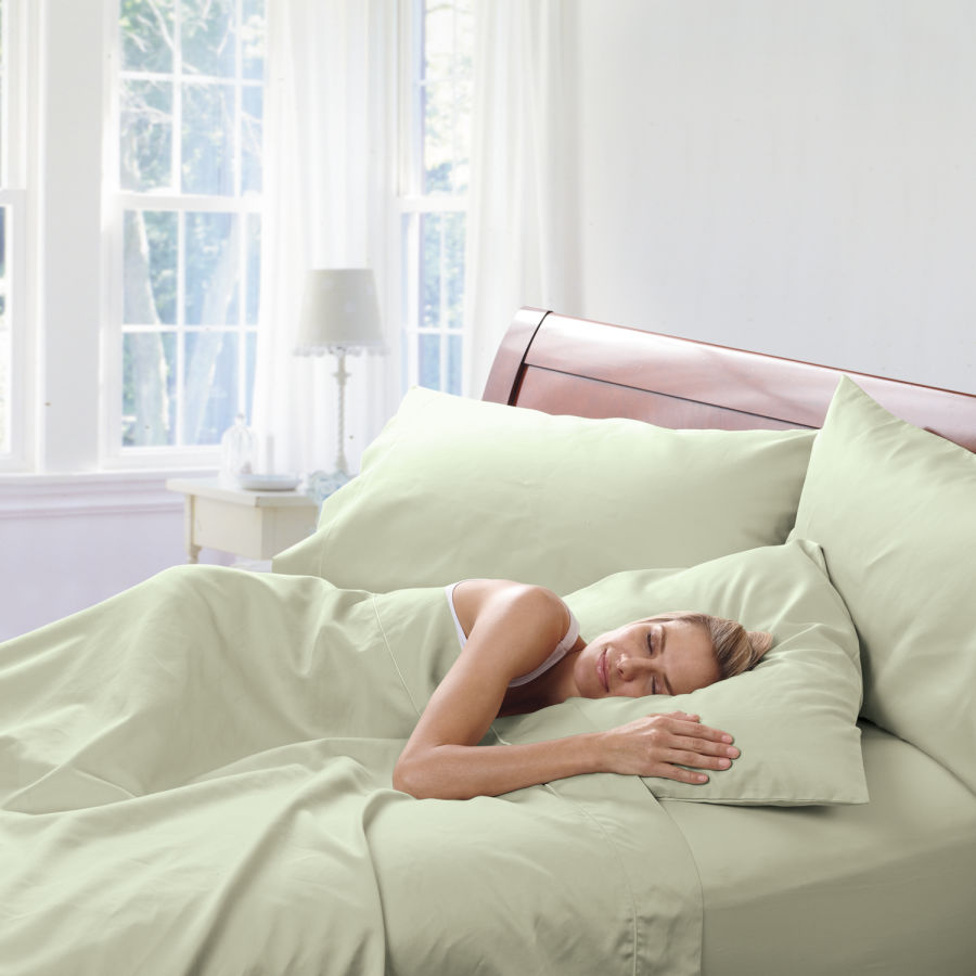 Standard Queen pillowcase pair