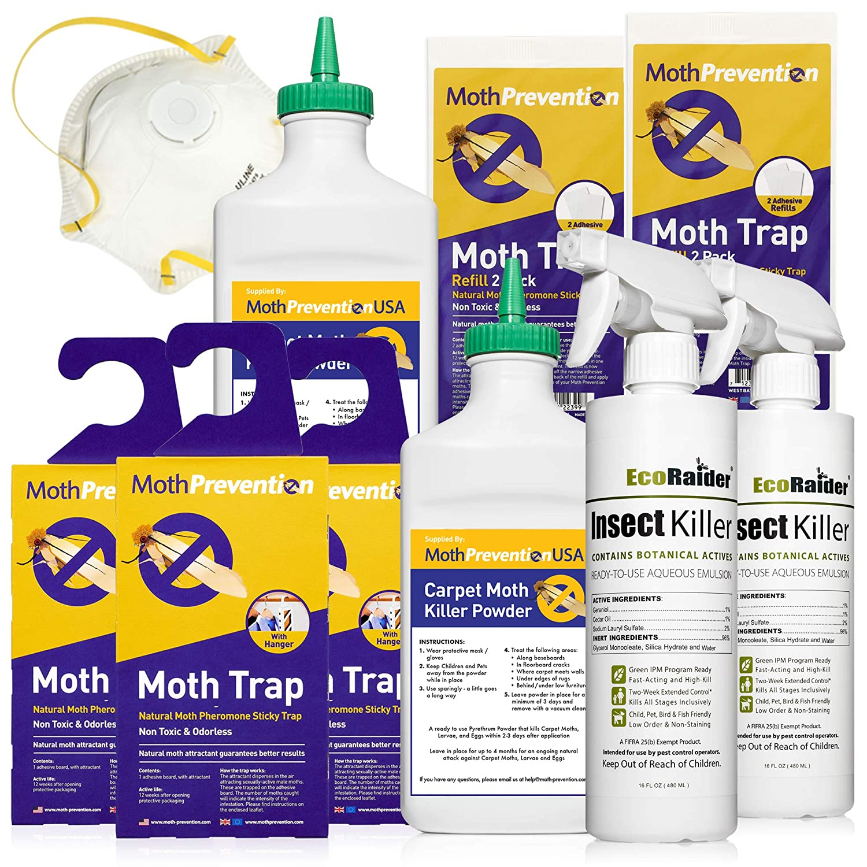 How To Get Rid Of Carpet Moth Larvae Carpet Vidalondon