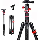 Zomei M5 Camera Tripod,Lightweight Travel Aluminum Tripod Monopod Compact Portable Photography Tripod Stand with 360 Degree B