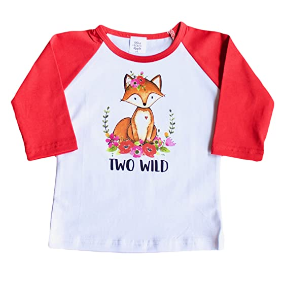 Girls 2nd Birthday Shirt Toddler Two Wild Raglan Boho