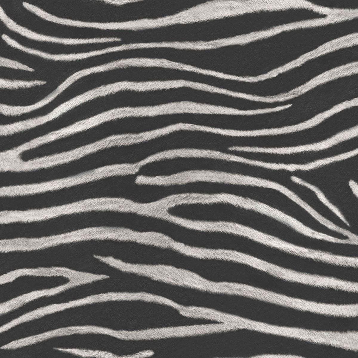/Papier Peint Art House 670300 Tropiques Serengeti Zebra Imprimer/ /Noir/