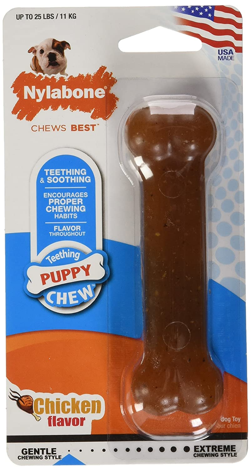 Pet Supplies   Pet Chew Toys   Nylabone Just for Puppies regular Chicken  Flavored Bone Puppy Dog Teething Chew Toy   Amazon.com cd0a367d148