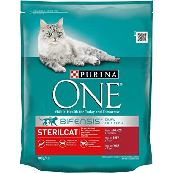 Purina ONE Bifensis Pienso para Gatos Esterilizados Buey y Trigo 8 x 800 g: Amazon.es: Productos para mascotas