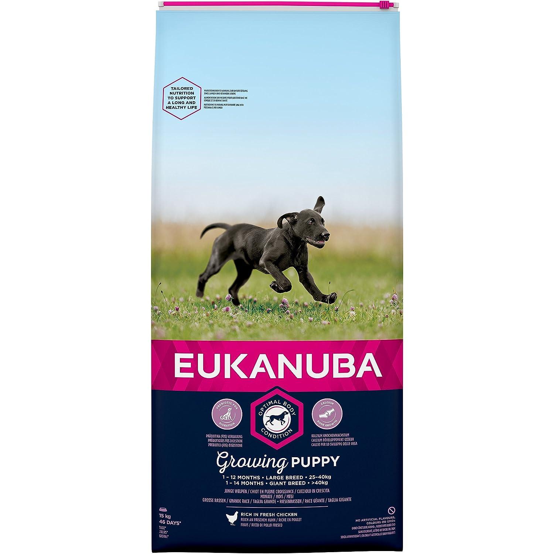 Eukanuba Puppy Trockenfutter