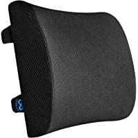 Everlasting Comfort Lumbar Support for Office Chair - 100% Pure Memory Foam Back Pillow for Car