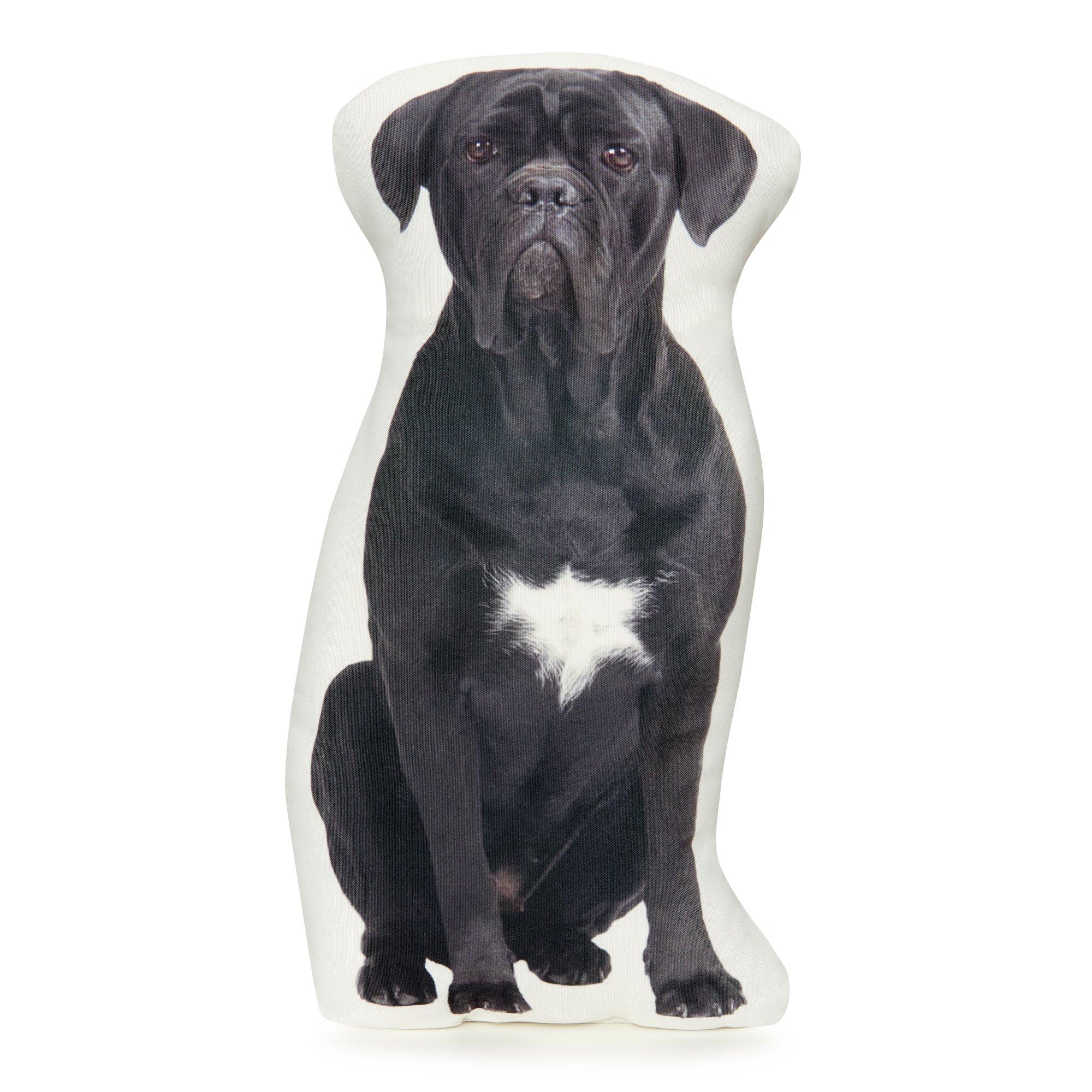 Cushion Co - Cane Corso Dog Pillow 16'' x 12''