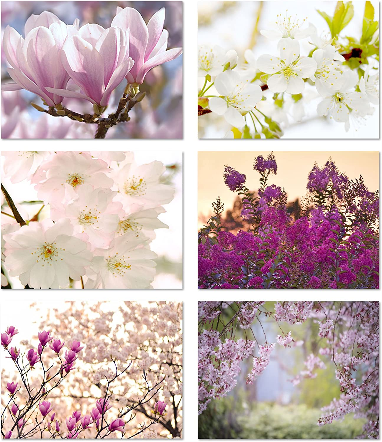 """Spring Blossoms Blank Note Cards - Flower Greeting Cards with Envelopes - 6 Unique Designs - 5.5""""x4.25"""" (12 Pack)"""