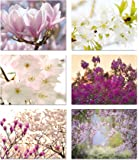 """Spring Blossoms Blank Note Cards - Flower Greeting Cards with Envelopes - 6 Unique Designs - 5.5""""x4.25"""" (24 Pack)"""
