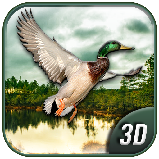 Duck Hunting Highland (Duck Hunting Games)