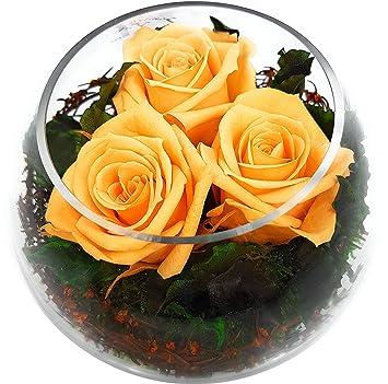 Rosen Te Amo Konservierte Echte Rosen Arrangement Im Bowl Vase 11