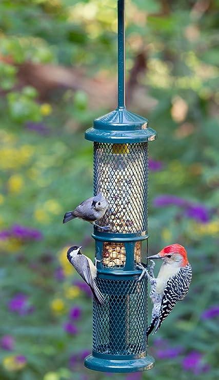 Brome Bird Care BD1052 Squirrel Buster Peanut + (Set of 1)
