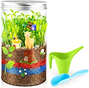 Growsland Terrarium Kit Toys for Kids - Gardening Gifts for Kids Arts and Craft, Customized Mini Garden in a Jar, Science Kits Birthday Xmas Gifts for Boys and Girls Age 5 6 7 8 9 10 Year Old