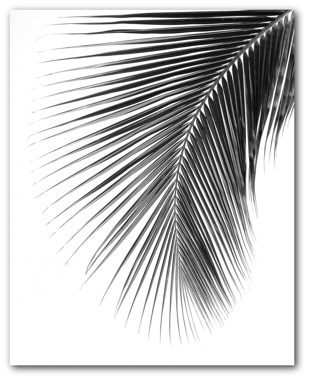 Amazon com palm leaf print black and white tropical leaf 8 x 10 inches unframed handmade