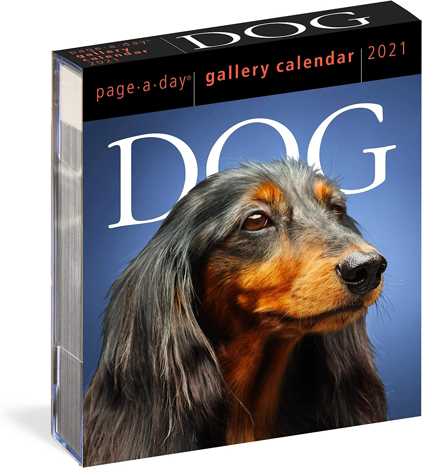 "Dog Page-A-Day Gallery Calendar 2021 [6.25"" x 7.25"" Inches]"