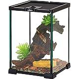 "REPTIZOO Mini Reptile Glass Terrarium Tank 8"" x 8"" x 12"" Full View Visually Appealing Top Feeding & Venlitation Mini…"