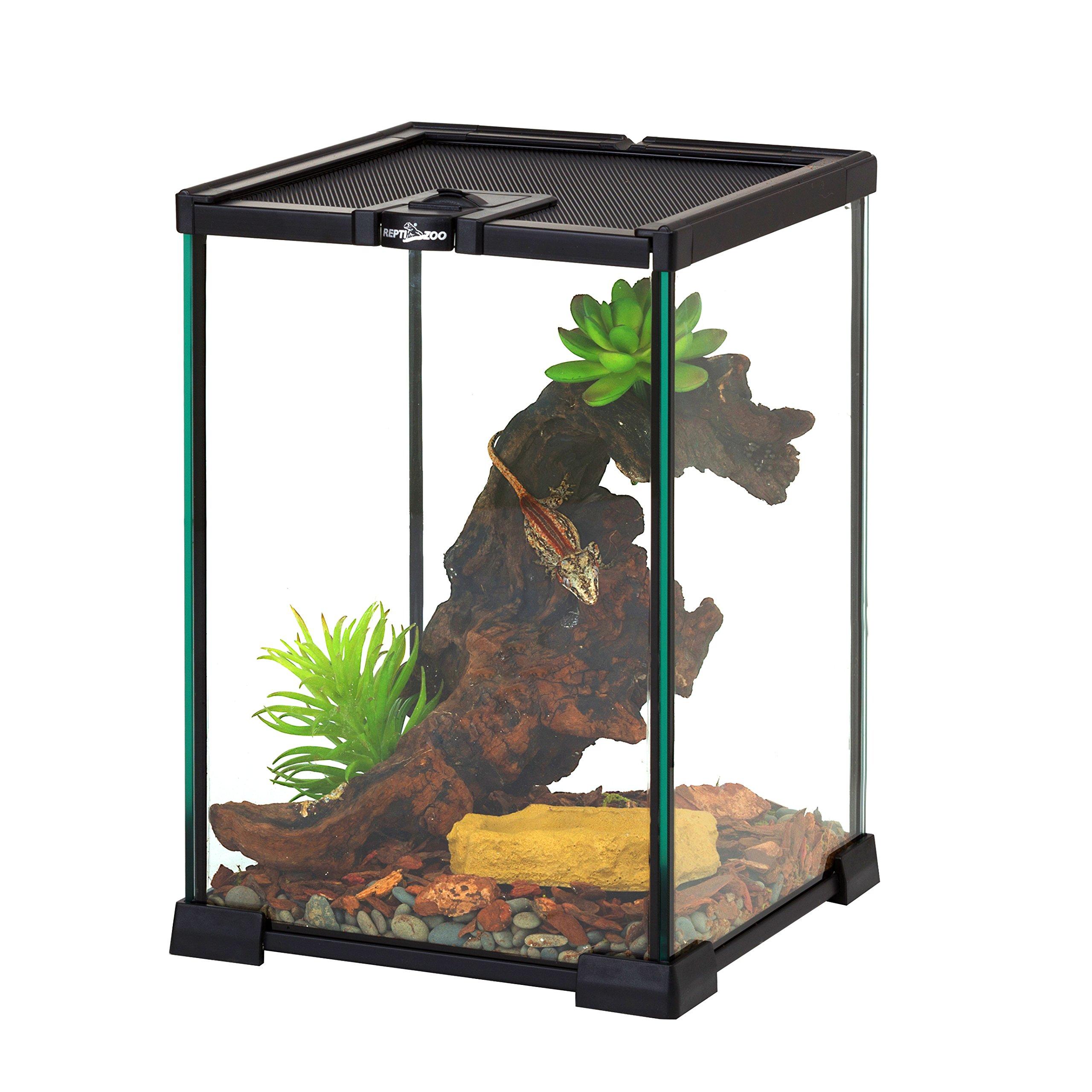 REPTI ZOO Mini Reptile Glass Terrarium,Full View Visually Appealing Mini Reptile Glass Habitat by REPTI ZOO