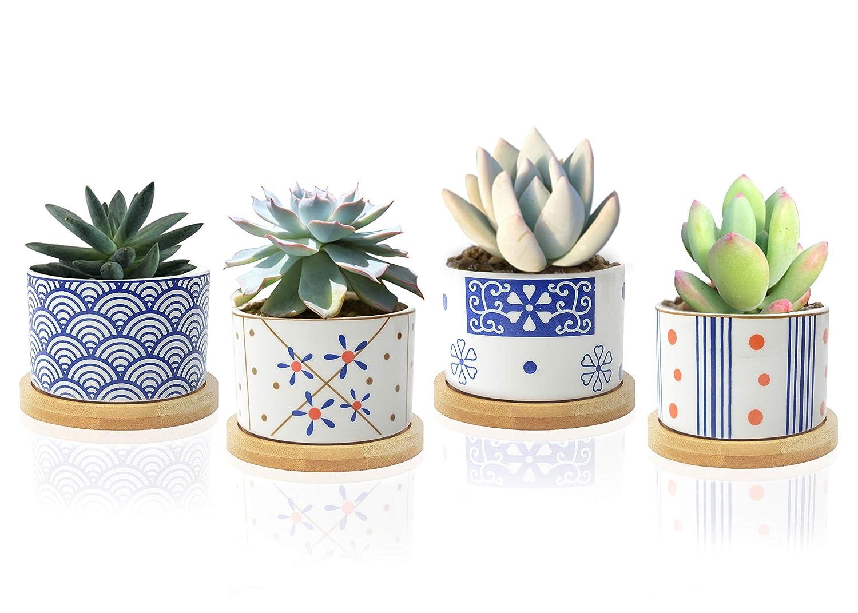 2 inch Ceramic Succulent Pots Small Planter 4 Set with Bamboo Tray Small Plant Pots for Succulents Japanese Style Mini Pots with Drainage