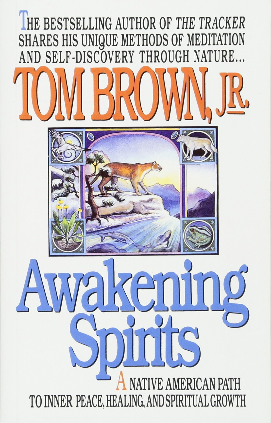 awakening-spirits-a-native-american-path-to-inner-peace-healing-and-spiritual-growth-religion-and-spirituality
