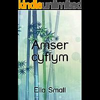 Amser cyflym (Welsh Edition)