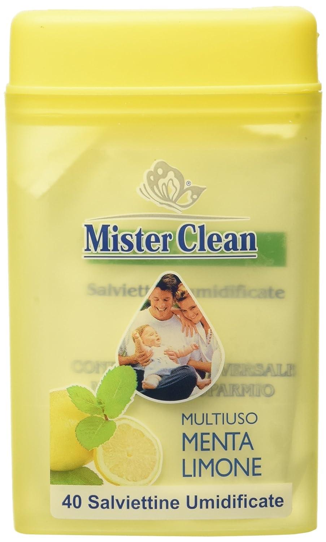 Salviette Mr Clean X 40 Bar. Travel Converting Wet Wipes