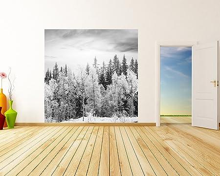 bilderdepot24 photo wallpaper wall mural winter forest black andbilderdepot24 photo wallpaper wall mural winter forest black and white 19 69 inch x 19 69