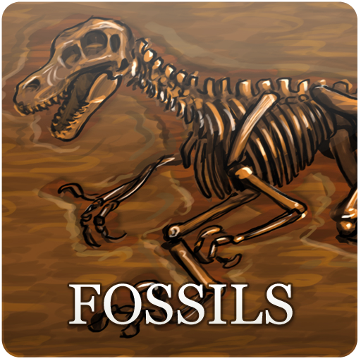 (Fossils (Kindle Tablet Edition))