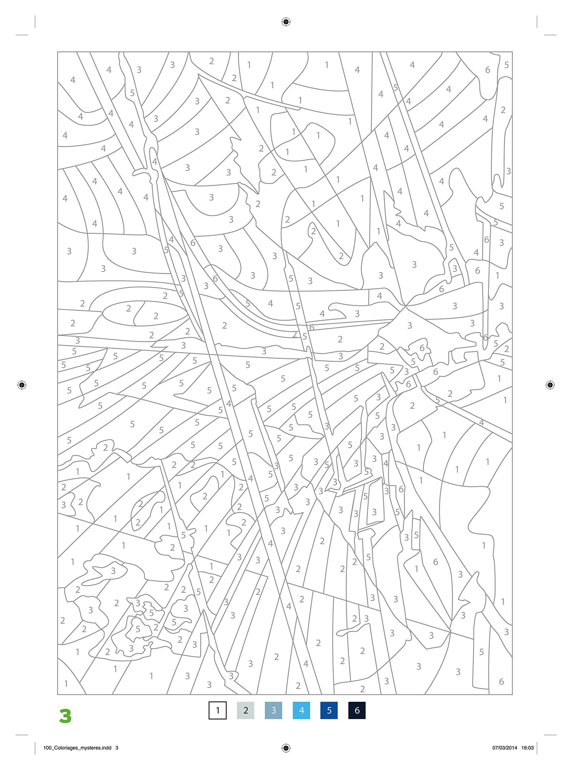 Coloriage Anti Stress Numerote A Imprimer.100 Coloriages Mysteres Art Therapie Amazon Fr Jeremy Mariez Livres
