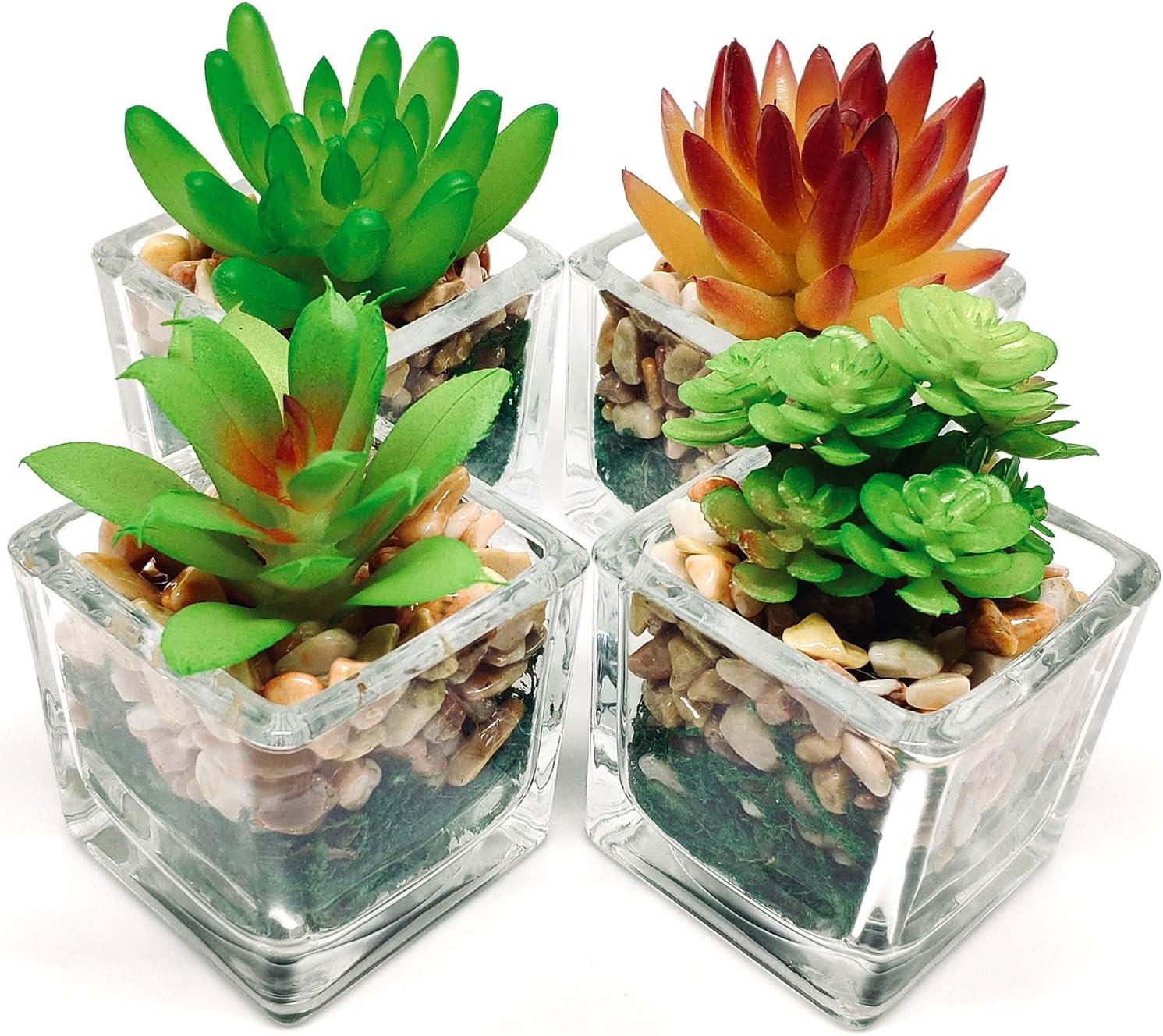 Espoir Living Small Artificial Succulents in Glass Cubes | 4 Set | Assorted Realistic Faux Plants