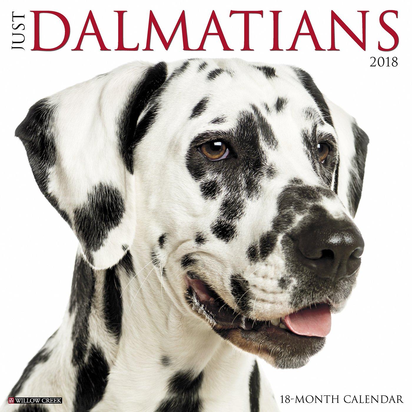 Download Just Dalmatians 2018 Calendar pdf epub