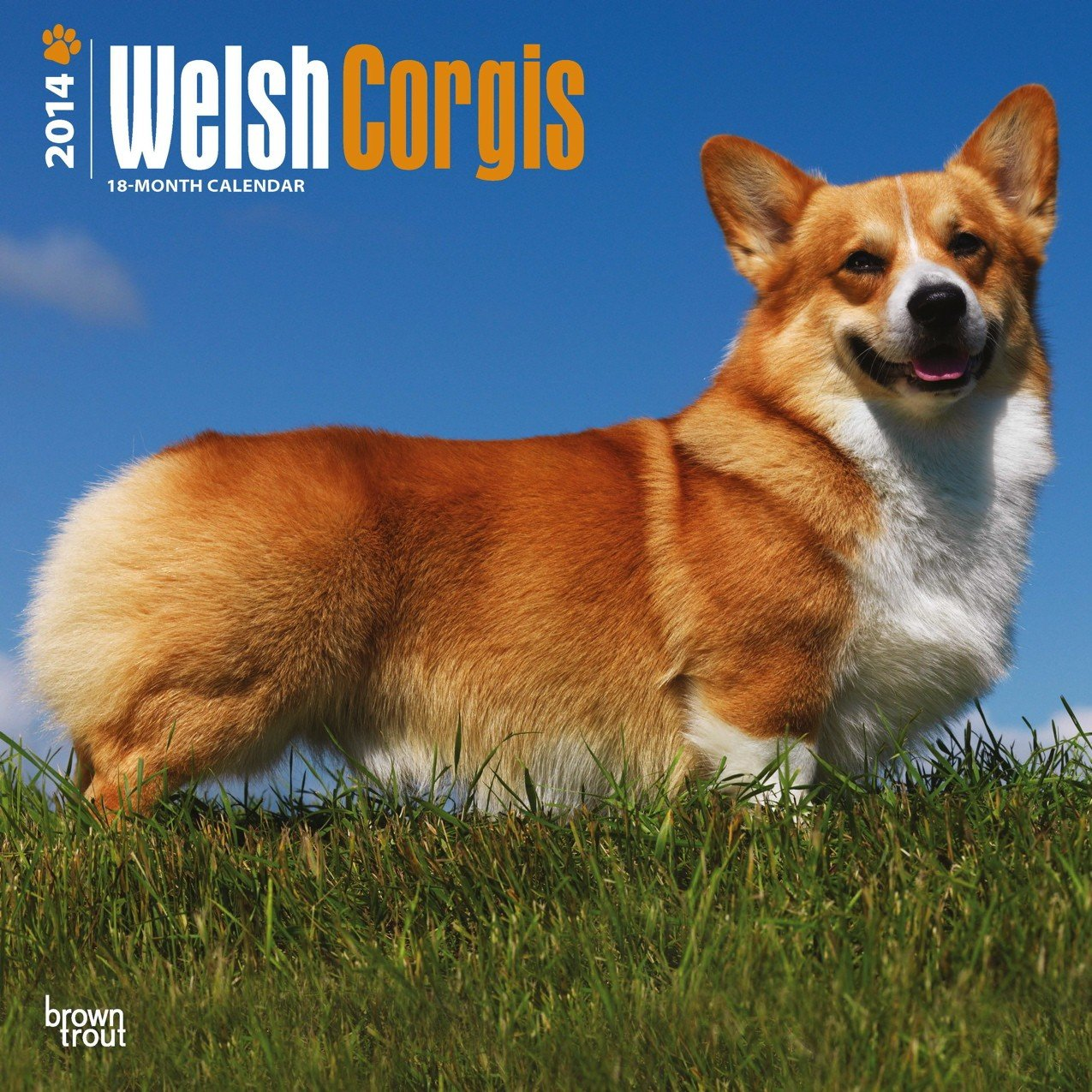 Welsh Corgis 2014 Calendar, 18-Month Calendar (Multilingual Edition) pdf
