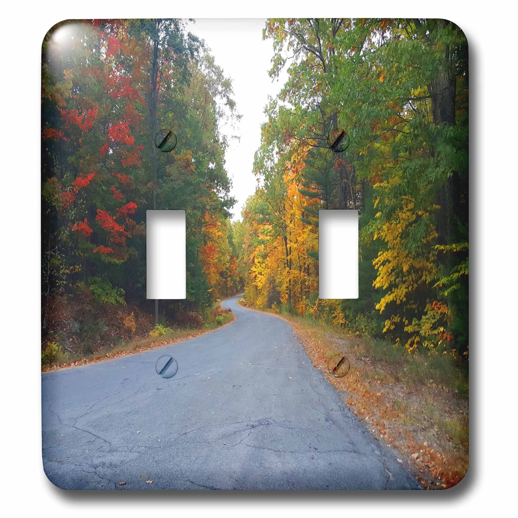 3dRose TDSwhite – Miscellaneous Photography - Winding Country Road Distance - Light Switch Covers - double toggle switch (lsp_285451_2)