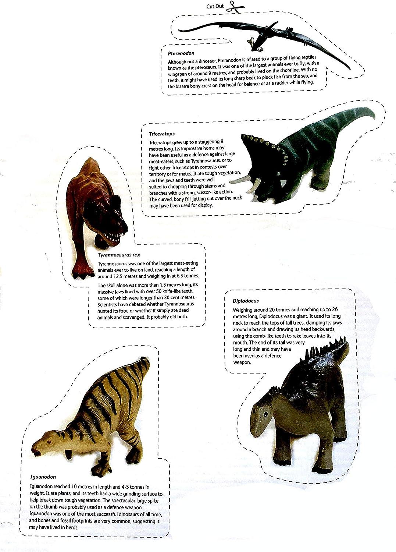 Wild Republic/ /53576/ /National Mus/ée dHistoire Dino boxsatz 8/pi/èces
