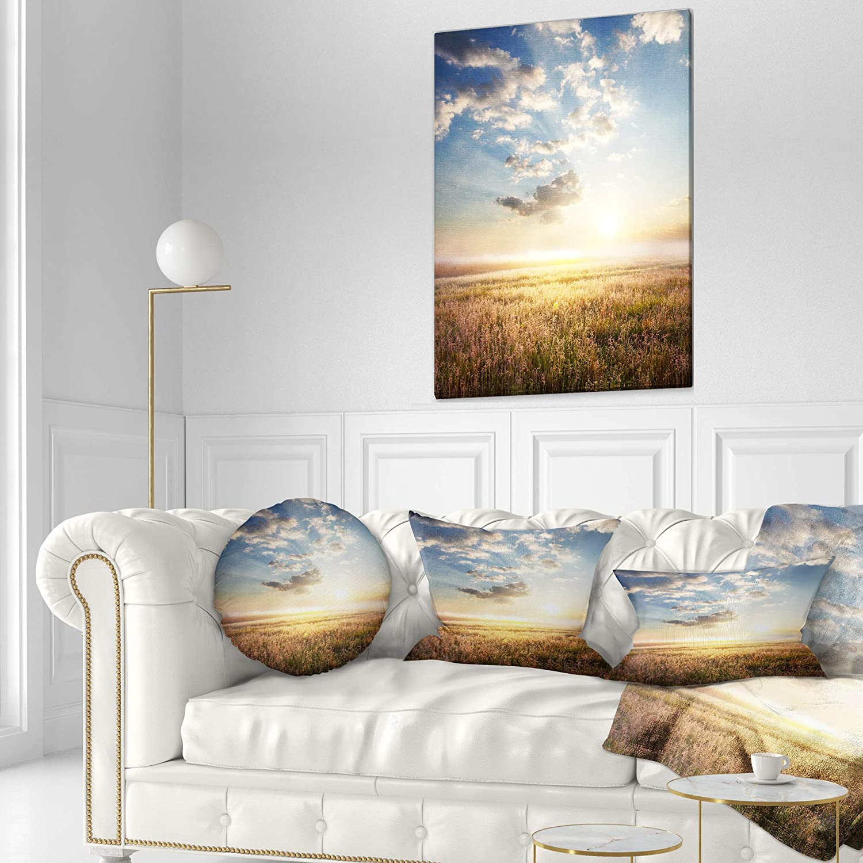 Sofa Throw Pillow 16 Designart CU12497-16-16-C Mountain Meadow Under Overcast Sky Landscape Printed Round Cushion Cover for Living Room