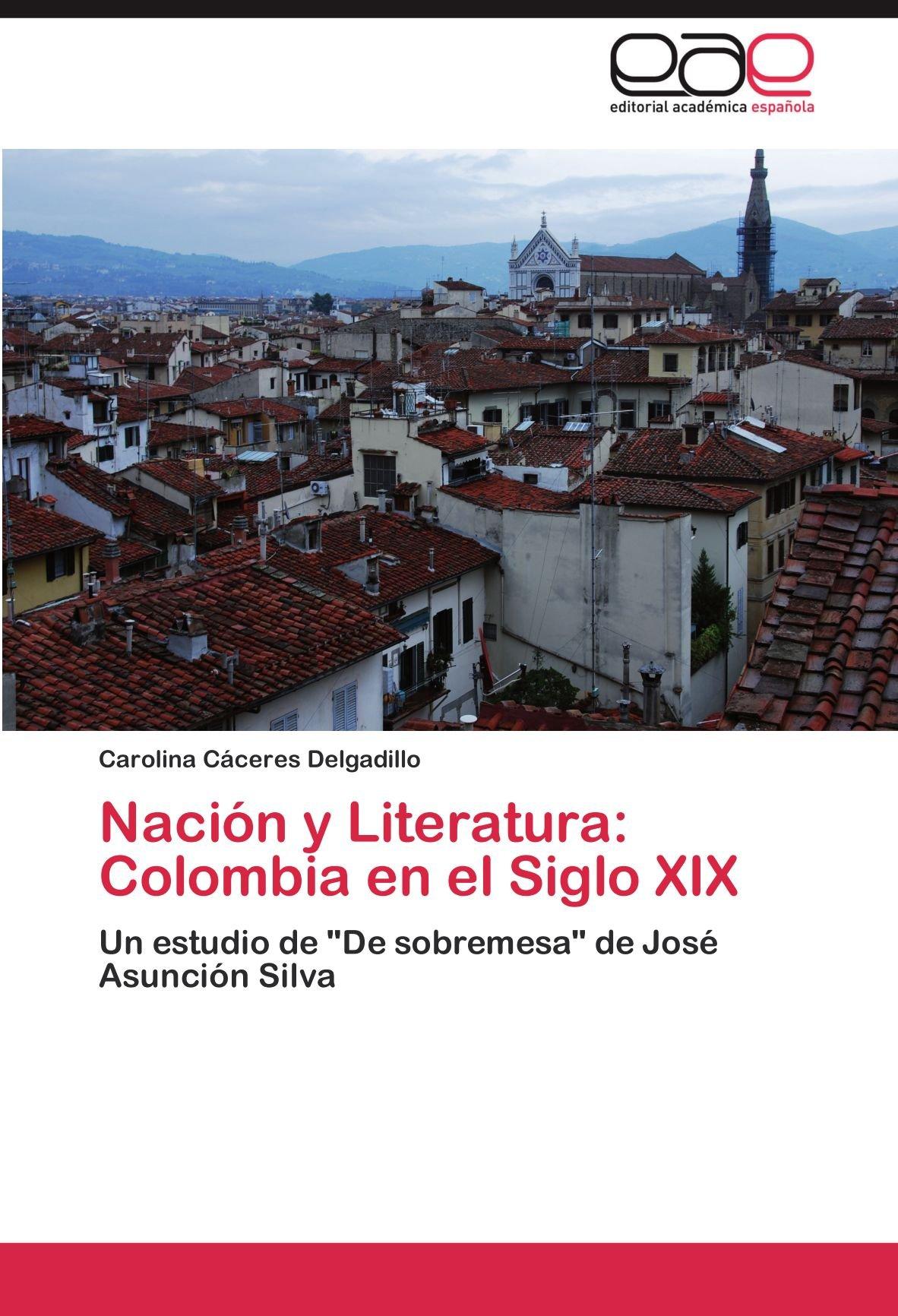 Nacion y Literatura: Colombia En El Siglo XIX: Amazon.es: Carolina C. Ceres Delgadillo, Carolina Caceres Delgadillo: Libros