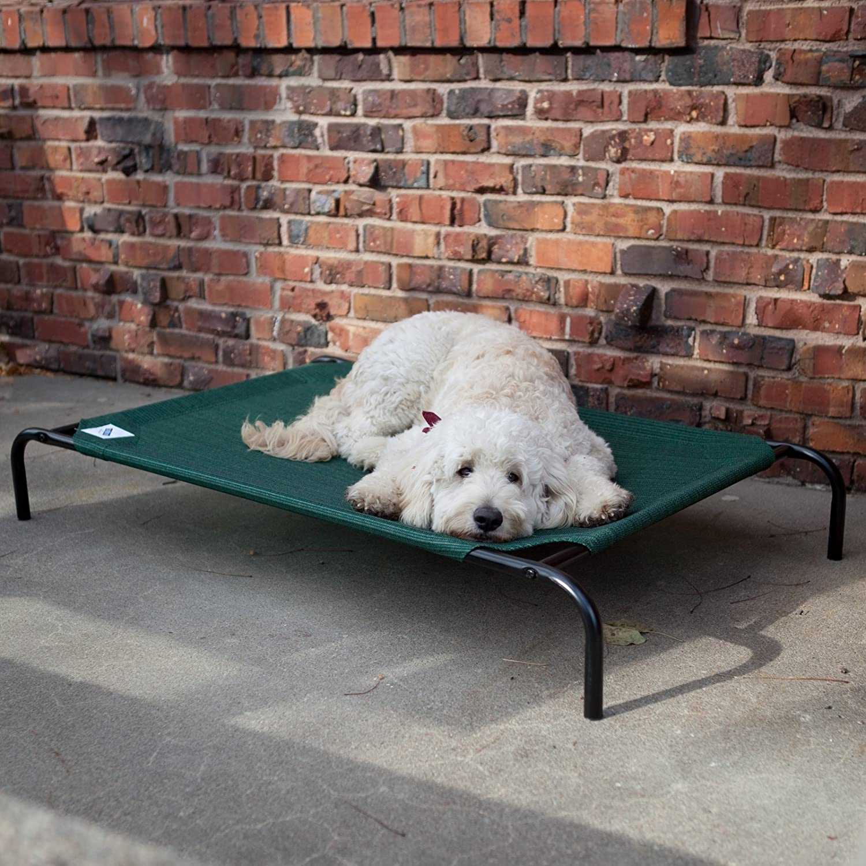 Gray Coolaroo Elevated Pet Bed Medium