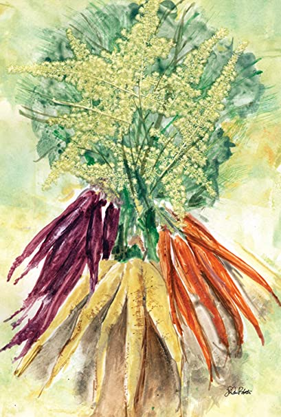 Amazon Com Toland Home Garden Watercolor Carrots 28 X 40 Inch
