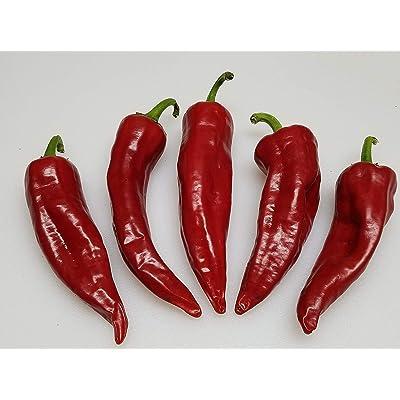 Zia Pueblo Pepper 10+ Seeds : Garden & Outdoor