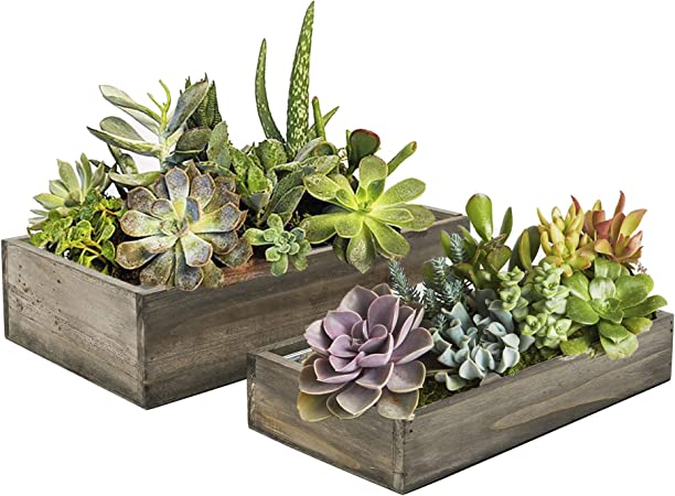 Wood Planter Decorative Box 15 Sizes Available Succulent and Floral Arrangements CYS Excel Rustic Planter Box Wedding D/ÉCOR H:3 Open:18x6 Indoor Use Wood Box with Removable Liner
