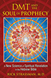 DMT and the Soul of Prophecy: A New Science of Spiritual Revelation in the Hebrew Bible (English Edition)