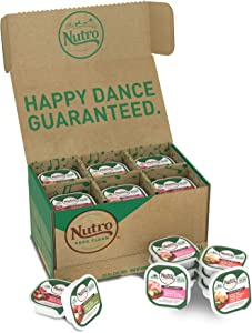 NUTRO Adult High Protein Natural Grain Free Wet Dog Food Cuts in Gravy Beef