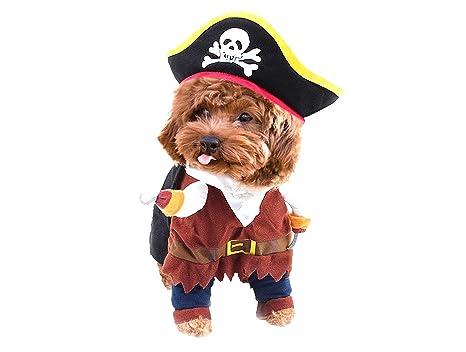 Act Disfraz de Pirata para Mascotas, Perro, Gato, Disfraz de ...