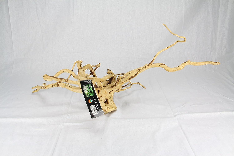Stoffels Racine Araignée Bois d'Ornement Décoration pour Aquariophilie 30-40 cm Taille Moyenne Oriental Aquarium