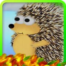 Hedgehog Down!