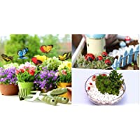 Krisah® 5pcs Butterflies on Metal Wire with 5 pcs Ladybugs Garden/Plant Decor